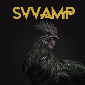 SVVAMP-SVVAMP-RE-RECORDS