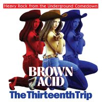 Brown Acid The Thirteenth Trip